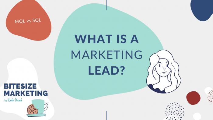 BiteSize, bite-size, snackable, marketing, marketing tips, basics of marketing, marketing lead, customer